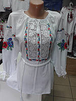 Жіноча вишиванка Ласкавиця