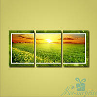 Модульная картина Триптих Зелёное поле из 3 фрагментов