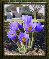 Схема для вышивания бисером на авторской канве крокусы цветы
