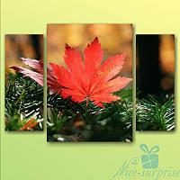 Модульнакая картина Осенний лист на ветке из 3 модулей, фото 1