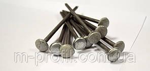 Гвозди шиферные 5,0 * 120 мм фасовка 1 кг, фото 2
