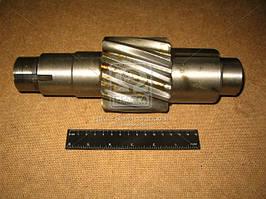 Шестерня ведущая цилиндр. Z=12 (КамАЗ). 5320-2402110-20