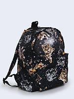 Рюкзаки с котами фото рюкзаки-тележки