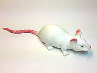 Лизун мышка слим