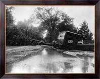 """Картина  Часть ущерба, нанесенного ураганом """"Кэрол"""", Неизвестен"""