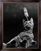 Картина Игра в кошки-мышки, Эхо