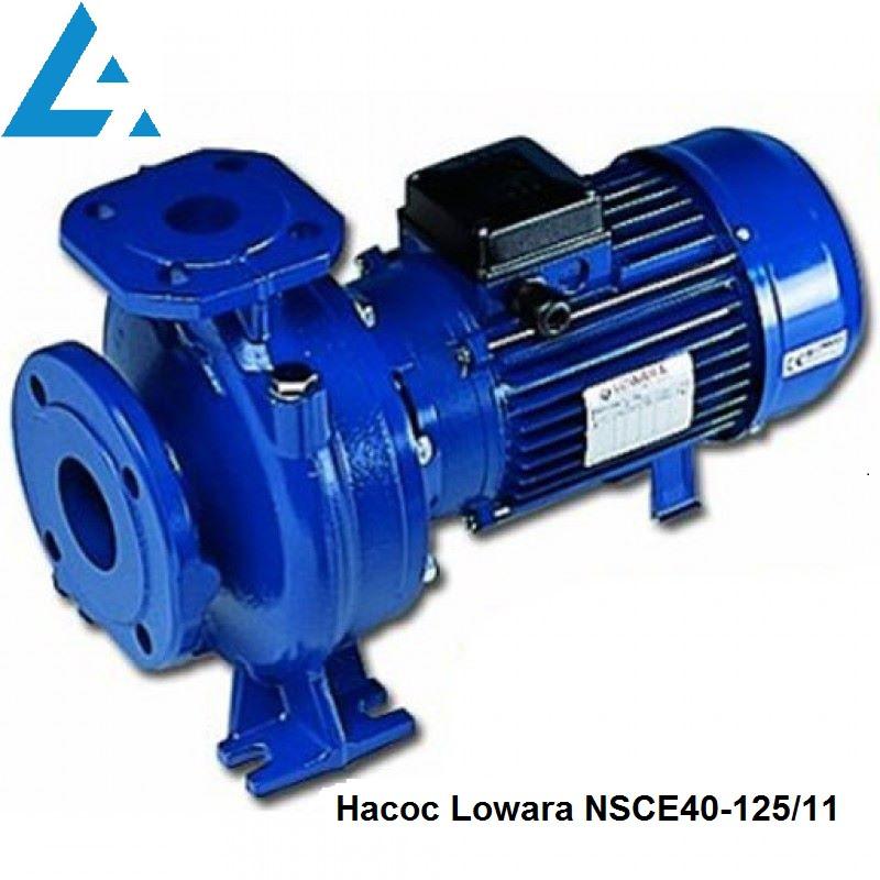 Насос NSCE40-125/11 Lowara (ранее насос FHE40-125/11).  Цена грн Украина
