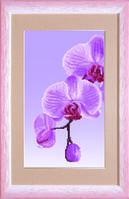 Схема для вышивания бисером на авторской канве Орхидеи Триптих №1
