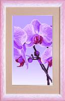 Схема для вышивания бисером на авторской канве Орхидеи Триптих №2