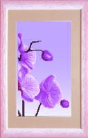 Схема для вышивания бисером на авторской канве Орхидеи Триптих №3
