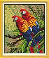 """Набор для вышивки крестом с печатью на ткани 14ст  """"Пара попугаев """""""