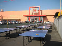 Теннисные столы «Sunflex»  СУПЕРЦЕНА