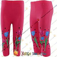 Бриджи с цветами для девочек от 3 до 7 лет Турция (4282-3)