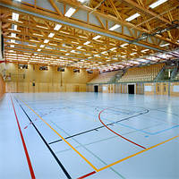 Покриття  для спортивних залів  з поліуретану CONIPUR HG , фото 1