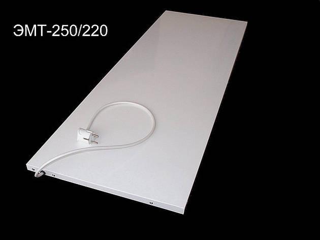 Инфракрасный обогреватель Econom – 250 Вт. Нагревательная панель Батарея. Конвектор., фото 2