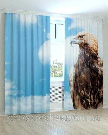 Фотошторы гордый орел
