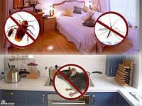 Электромагнитный отпугиватель  грызунов и насекомых Ридекс Плюс (Riddex Plus Pest Repeller