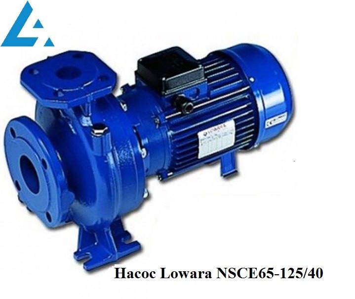 Насос NSCE65-125/40 Lowara (ранее насос FHE65-125/40).  Цена грн Украина