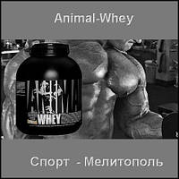Universal Nutrition ANIMAL WHEY 907 г