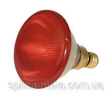 Инфракрасная лампа PAR38 150W для обогрева поросят