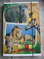 "Папка для труда ""ТІКІ"" В мире животных картонная"