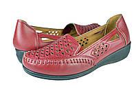 Женские туфли inblu 80-1rбордо летние , фото 1