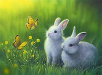 Алмазная вышивка Кролики в траве KLN 40 х 30 см (арт. FR141)