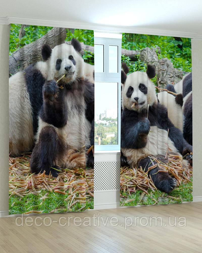 Фотошторы панды