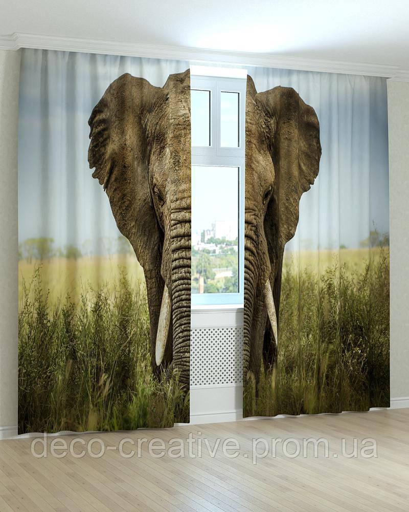 Фотошторы слон