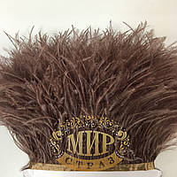 Тесьма страусиная Цвет  Сoffe Цена за  0.5м