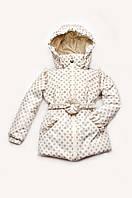 Куртка демисезонная для девочки в горошек