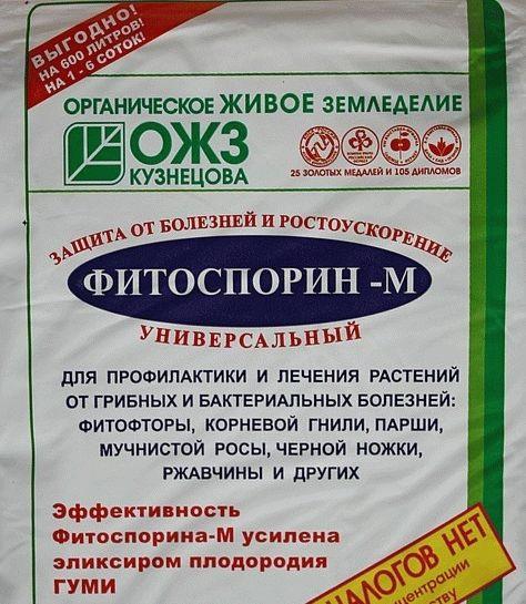Биофунгицид Фитоспорин-М паста (100 г) — профилактика грибковых и бактериальных заболеваний на растениях