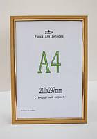 Рама пластиковая  А4 формата для оформления дипломов, золотого цвета. Рамка для фото