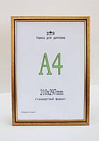 Рама пластиковая  А4 формата для оформления дипломов, золотого цвета с черной вставкой