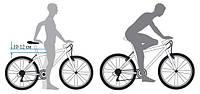 Выбор размера рамы велосипеда