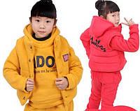 Детский теплый комплект тройка на девочку