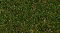 Искусственная трава для террасы Moongras 20, высота 20 мм