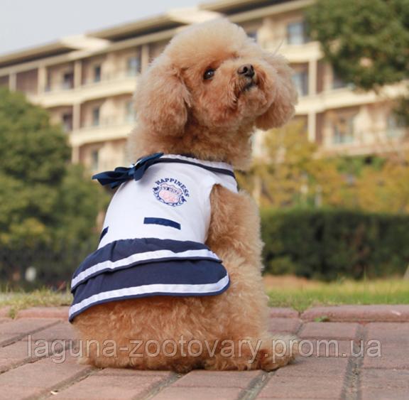 """Платье для собаки """"Марина"""" размеры XS, S, M, L, XL"""