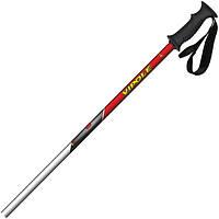Лыжные палки Vipole Rental Alu 120