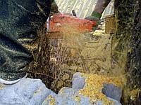 Спілка дерев Прибирання пнів, фото 1