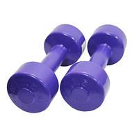 Гантели для фитнеса Титан 1,5 кг