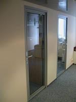 Дверь в алюминиевой раме, фото 1