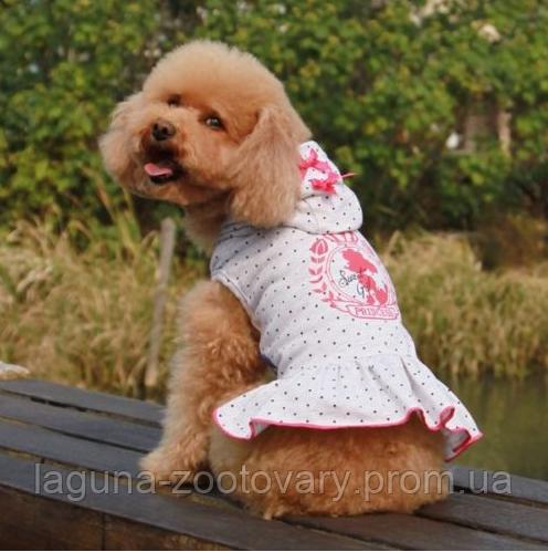 """Платье с капюшоном для собаки """"Принцесса"""" размеры XS, S, M, L"""