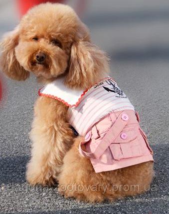 """Плаття для собаки """"Матроска"""" розміри XS, S, M, L, XL"""