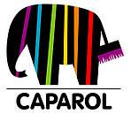 Декоративная отделка фасадов. Декоративные штукатурки от CAPAROL.