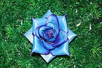 Атласная чайная роза № 117, Ø 12см