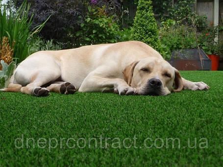 Искусственная трава Paradise Verde для ландшафтного дизайна и декора, фото 2