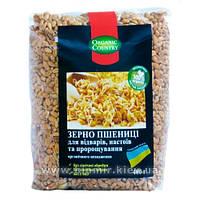 Пшеница твердых сортов для проращивания, отваров и настоев 400 г, ORGANIC COUNTRY