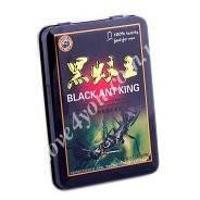 Black Ant King