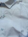 Рубашка в полоску для мальчиков 5- 16 лет, фото 3